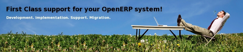 First Class support for your OpenERP system! Development, Implementation, Support, Migration.